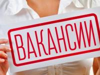 Актуальная пятерка новгородских вакансий: выпуск пятый, 15 февраля. Помощник пекаря и другие предложения