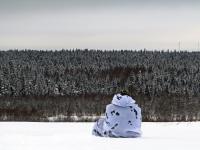 Фотофакт: зимний лес в национальном парке «Валдайский»