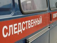 Историей со сбитыми у новгородского «Мармелада» детьми занялся следком