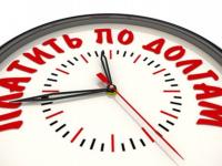 Новгородский суд наказал многодетного алиментщика ограничением прав на вождение и путешествия
