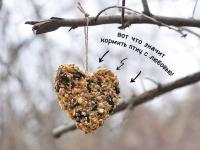 Памятка от экологов: «Сало можно, хлеб нельзя»