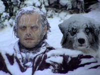 Первые дни весны запомнятся жителям Новгородской области лютым холодом