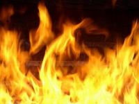 Пожар в деревне в Солецком районе унес жизнь человека
