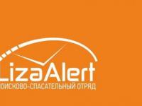 В Новгородской области может находиться пропавший подросток из Любани
