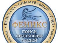 В Новгородской области пропал 12-летний мальчик