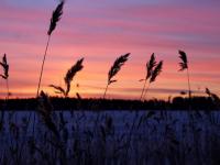 Фотофакт: фантастический рассвет в Валдае