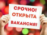 Пятерка актуальных новгородских вакансий. 23 марта