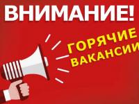 Сегодня в «Актуальной пятерке новгородских вакансий» отличные предложения. Кому-то повезет!