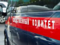 СУ СК проверяет обстоятельства гибели девочки в Боровичском районе