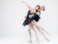 В Новгородской филармонии покажут балет «Лебединое озеро» с принцем – премьером Мариинки