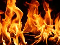В Новгородской области на пожарах погибли два человека