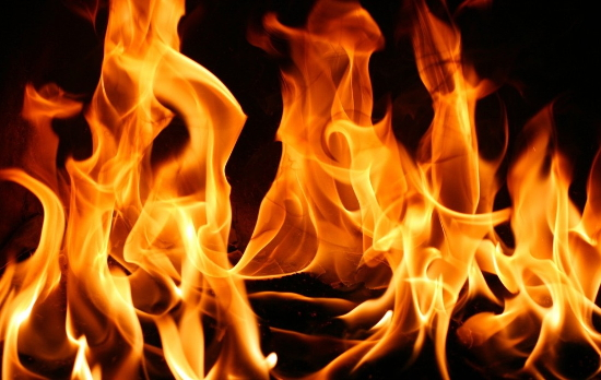 Пожарные в Новгородской области потушили пламя менее чем за 15 минут
