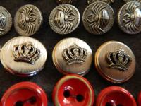 Филобутонист из Старой Руссы открыла тайны своей коллекции