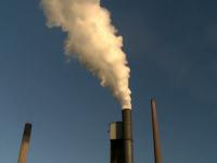 Группа новгородцев выступила против строительства цементного завода в Трубичине