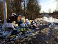 Малая Вишера утопает в мусоре и страдает от свалки, которая превратилась «в зловонную гору выше леса»