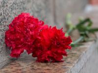 В Новгородской области найдены останки погибшего в годы войны лётчика
