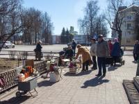 В Новгородской области выявлены нарушения при продаже рыбы
