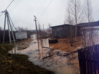 В Окуловском районе две плотины никто не охранял