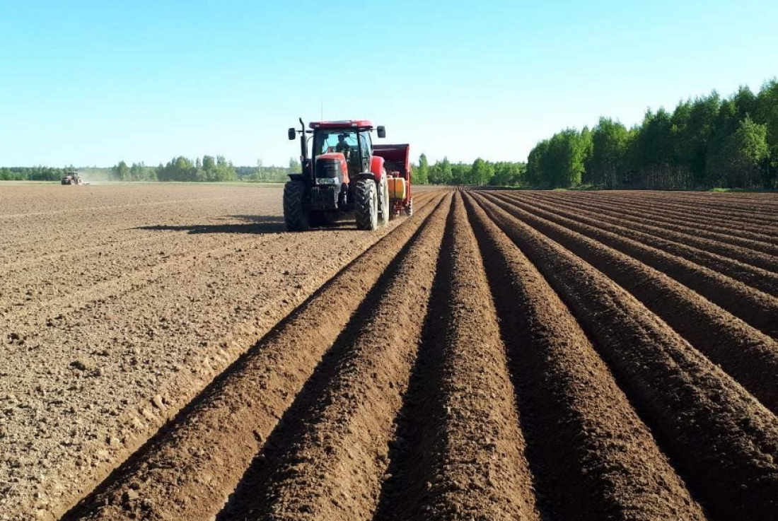 Фермерам дадут «Новгородский гектар»