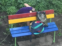 Фото: новгородцы стали свидетелями задержания девушки, подозреваемой в поиске тайника с наркотиками