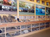 На Горной Мсте можно взять в руки животное, которому 375 000 000 лет