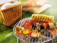 Новгородцам рассказали о правилах хорошего пикника