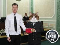 Окуловский кот стал главным героем программы «Вечерний Ургант» на Первом канале