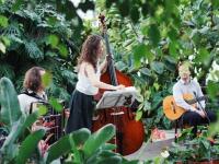 Трио-кроссовер Once Ensemble выступит субботним вечером в Великом Новгороде