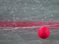 В День Победы ушел из жизни хранитель истории хоккея с мячом в Боровичах