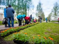 В международный день соседей новгородцы и общественники высадили цветы в парке Юности