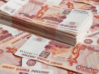 В Новгородской области «налоговый уклонист» вернул в бюджет 40 млн рублей
