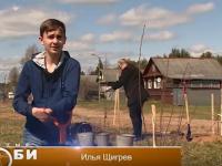 В Новгородской области по инициативе детей появится вишневый сад