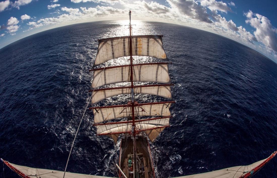 Боровичский предприниматель стал участником флешмоба к мундиалю в открытых водах Атлантики