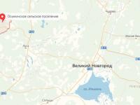 Новгородская область начеку из-за «чумных» кабанов в Лужском районе