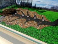Под Старой Руссой создают мемориал «Павший лист»