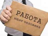 Пятёрка горячих новгородских и боровичских вакансий. 20 июня