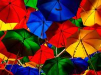 Во вторник в Новгородской области будет дождливо