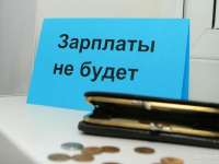 Завтра новгородские следком и трудинспекция проведут приём по невыплате зарплаты