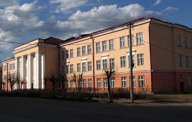 В Боровичах выберут фасады для огромных граффити