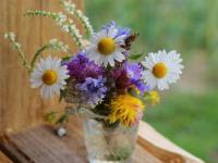 Более 60 лет дарит цветы любимой супруге Лука Михайлович Иванов из деревни Шкворово