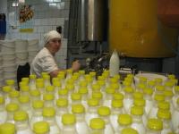 Один из старейших молокозаводов Новгородчины ожидает ребрендинг