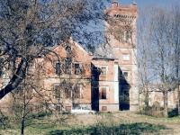 «Средневековый замок» под Боровичами приводят в порядок, но будущее его пока неизвестно