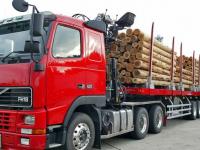 На любытинской дороге загорелось топливо из опрокинувшегося лесовоза