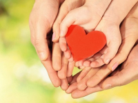 Любовь к детям заставила семейную пару из Окуловского района круто изменить свою жизнь