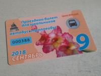 Фотофакт: новгородские школьные проездные стали пластиковыми