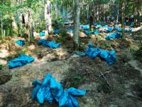 В новгородских болотах нашли останки 171 латышского легионера СС