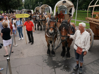 Немецкие тяжеловозы сделали остановку в Калининграде на пути в Великий Новгород