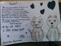 Рукописные плакаты новгородских девочек помогли бездомному животному обрести семью