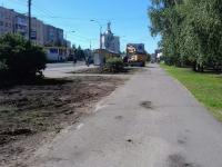 В Великом Новгороде реконструируют газоны