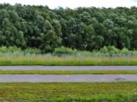 В Великом Новгороде трое злоумышленников расшатали элементы набережной